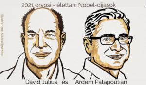 Ill. Niklas Elmehed © Nobel Prize Outreach